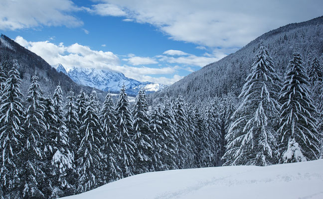 Tauglbach Winter © c.rebl