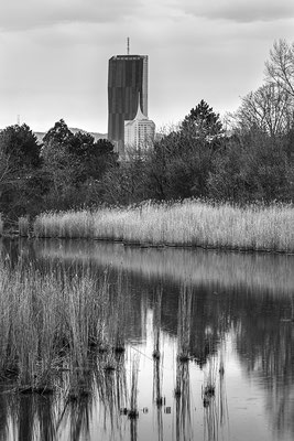 Natur in der Stadt © c.rebl