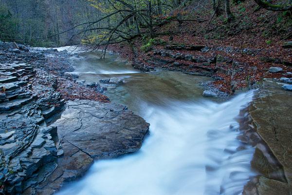 Tauglbach Herbst 11 © c.rebl