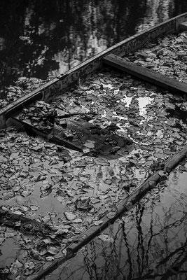 Donauauen Stockerau © c.rebl