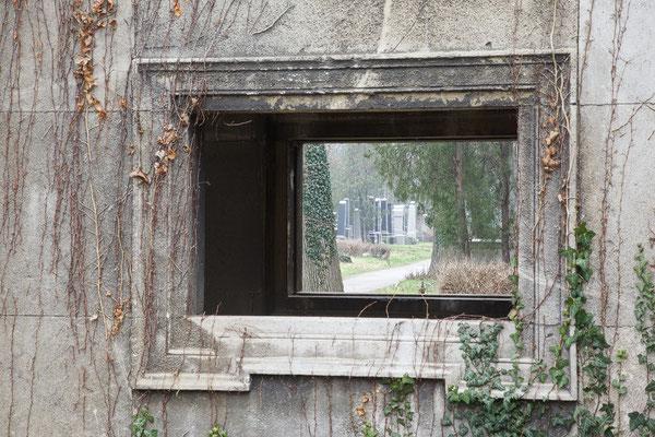 """"""" Durchsicht """" Zentralfriedhof Wien © c.rebl"""