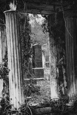 """"""" Pollak """" Zentralfriedhof Wien © c.rebl"""