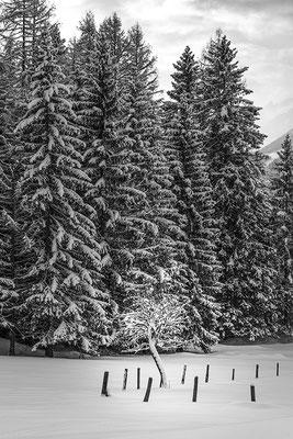 Ramsau/Dachstein 08 © c.rebl