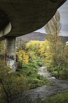 Am Wienfluss © c.rebl