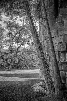 offside Schlosspark Laxenburg © c.rebl