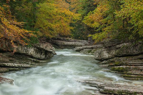 Tauglbach Herbst 2016  © c.rebl