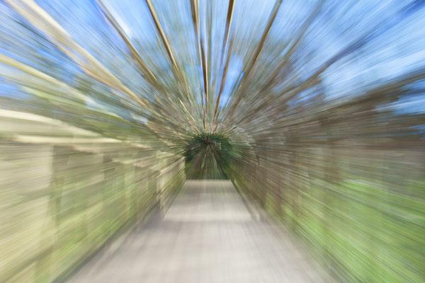 Lichtgeschwindigkeit - Schlosspark Sans Souci / Potsdam  © c.rebl
