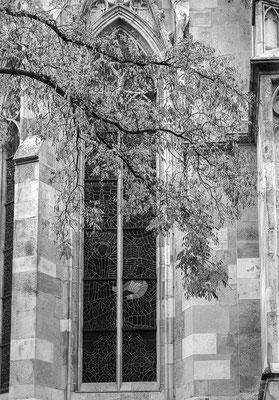 hinter der Kirche © c.rebl