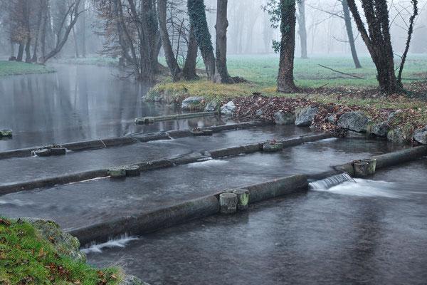 Schloßpark Pottendorf © c.rebl