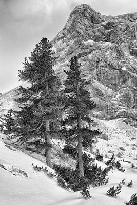 Dachstein - Region 7 © c.rebl