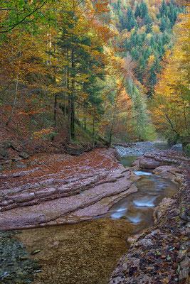 Herbststimmung © c.rebl
