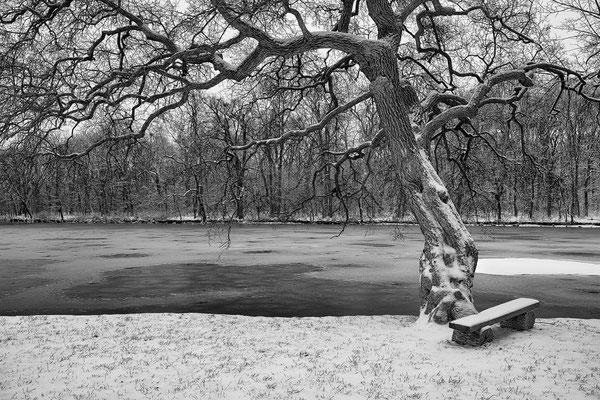 Schlosspark Laxenburg © c.rebl