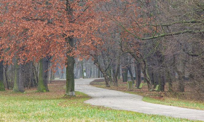 Schloßpark Laxenburg © c.rebl