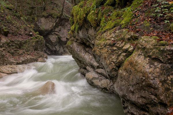 Tauglbach Herbst 9 © c.rebl