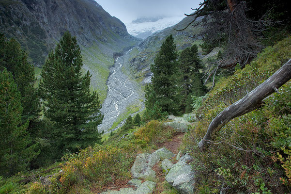 NP - Hohe Tauern Blick ins Viltragental © c.rebl