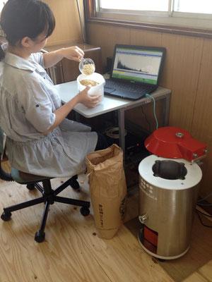 食品や土壌、衣類などを測定します。