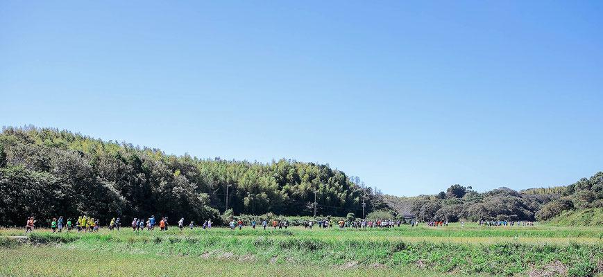 ランナーの上は青い空。周りは田んぼと里山の緑。
