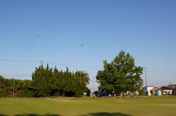 ③旧布土小学校跡地(名鉄河和口駅から北へ3分) 布土小学校まで歩いて15分