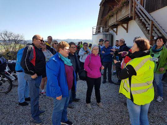 "FLYER E-Bike-Auflug durch ""Ämmitau"" 26.10.2019"