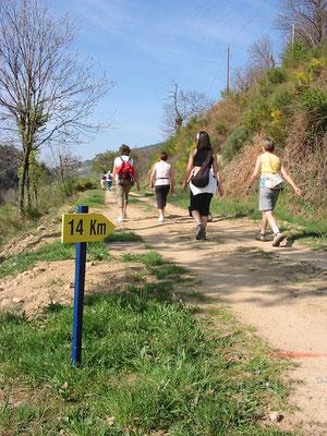 Randonnée la Ballastine sur la Dolce Via à Lamastre - Ardèche - 07