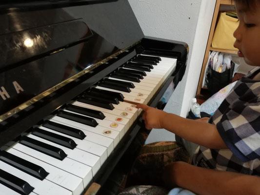 マンツーマンピアノリトミック どれみ音楽教室 江東区住吉 ピアノ