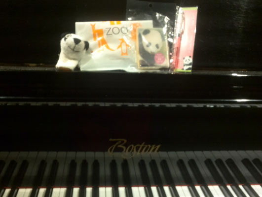 シャンシャン マンツーマンリトミック ピアノ どれみ音楽教室  田中由美子