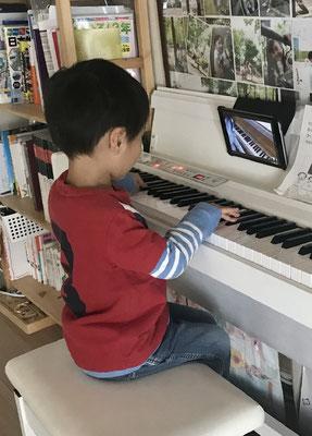 どれみLABO オンラインレッスン ピアノ マンツーマンリトミック