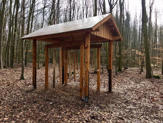"""""""Baumklang"""" von Dagmar Fischer © Tourist Information Paderborn/Hanah Hilwerling"""