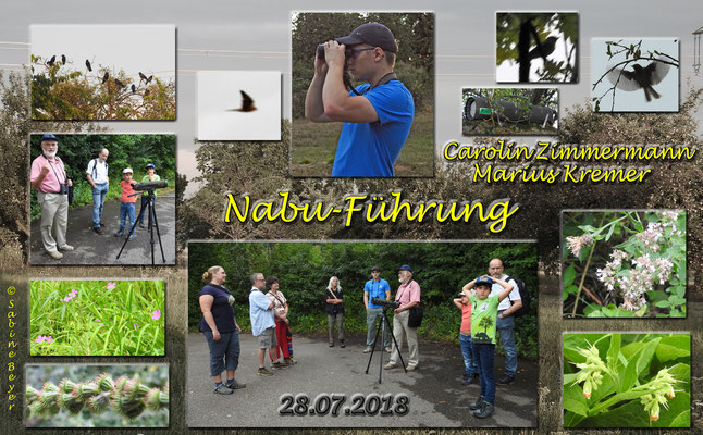 Collage und Fotos S. Beyer