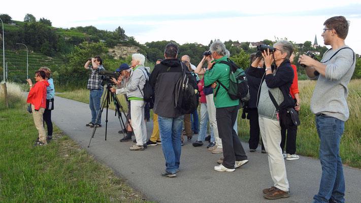 Besuchergruppe, Foto Sabine Beyer