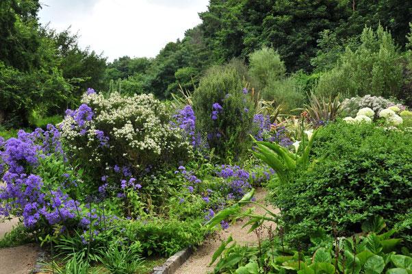 Malahide Garden