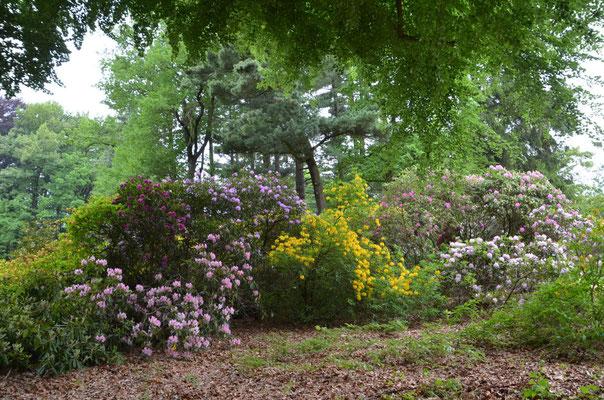 Kromlauer Park