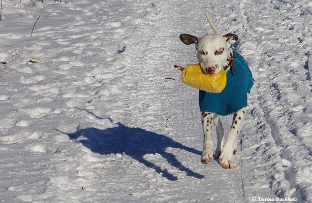 Ein toller Schneespaziergang mit viel Spaß in Alfdorf 06.01.2017