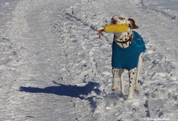 Ein toller Schneespaziergang mit viel Spa´in Alfdorf 06.01.2017