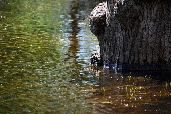 Das Wasser sinkt, aber nur langsam...