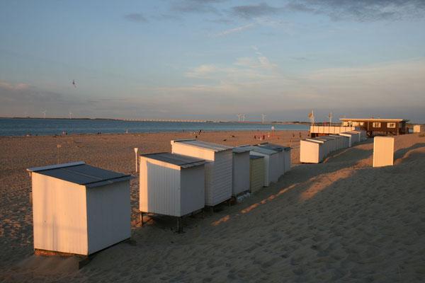 Strand von Vrouwenpolder