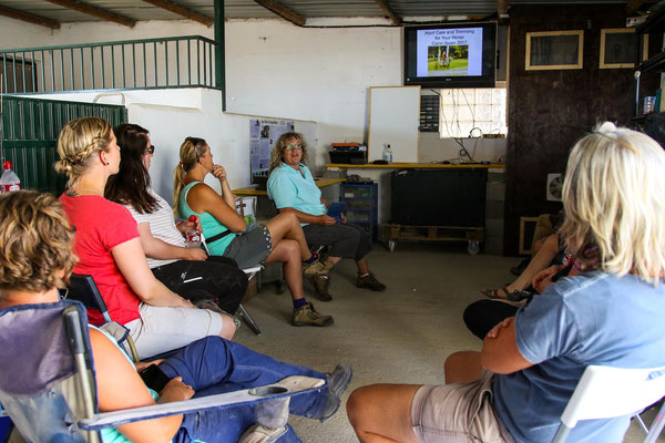 Lecture about lifestyle and affects on hoof health