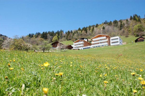 apartment Zimbablick, Brandnertal (Vorarlberg), free nature
