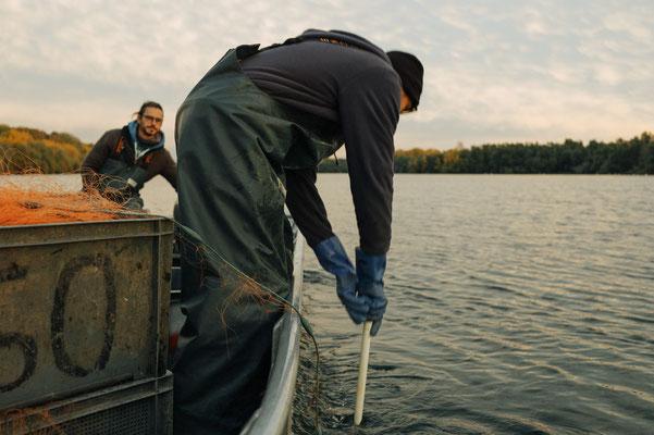 Stellnetzfischerei