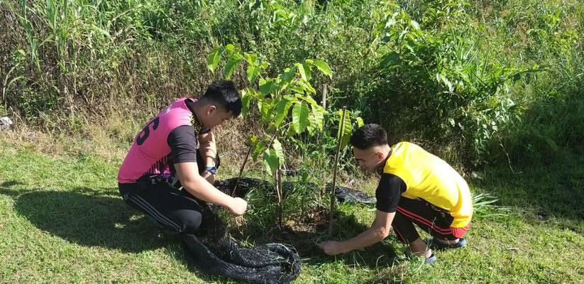 植林した苗木の草取りや水やりをしつつ、成長具合を記録