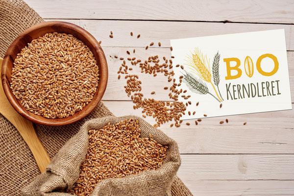 Bio Kerndlerei - Logogestaltung