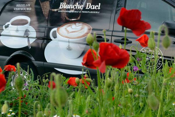 Maison Blanche Dael Maastricht