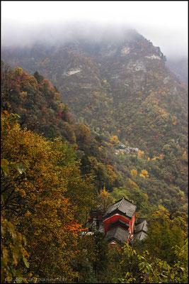The Betel-plum Temple, Wudangshan