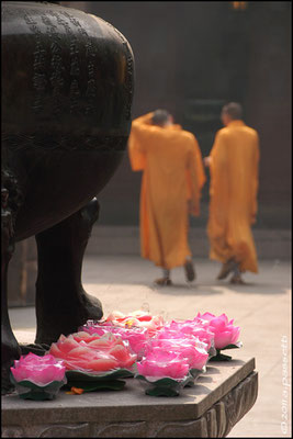 Monks and lotus-candles at the Jade Buddha Temple, Shanghai