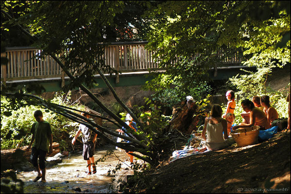 Gathering at the nice stream beside the houses in Vauban