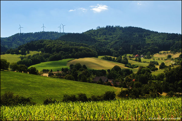 Countryside on the North-East of Freiburg