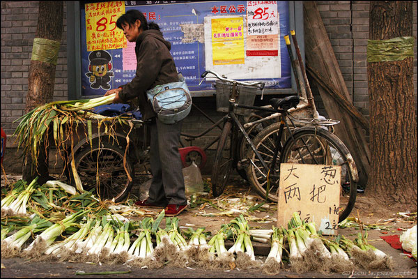 A vegetable seller nearby the Sihuan Market, Beijing
