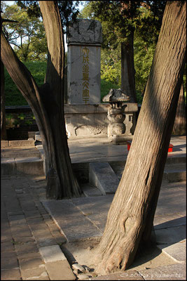 The tomb of Kongzi (Confucius), Qufu