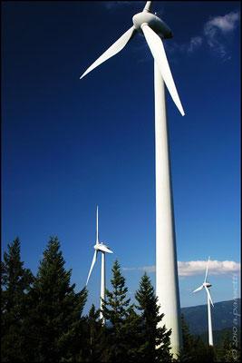 The wind turbines in Rosskopf