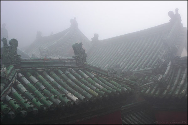 Wudangshan roofs at the Golden Summit